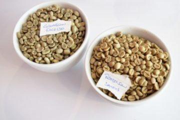 Muestra de cafe verde